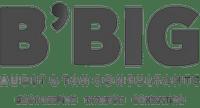 Bbig_1